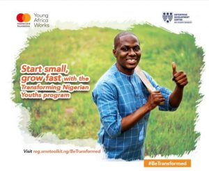 Apply For The Transforming Nigerian Youths Program 2021