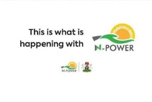Latest Updates on NPower Batch C Deployment and Selection