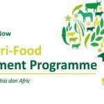 Africa Agri-Food Development Programme (AADP) 2021